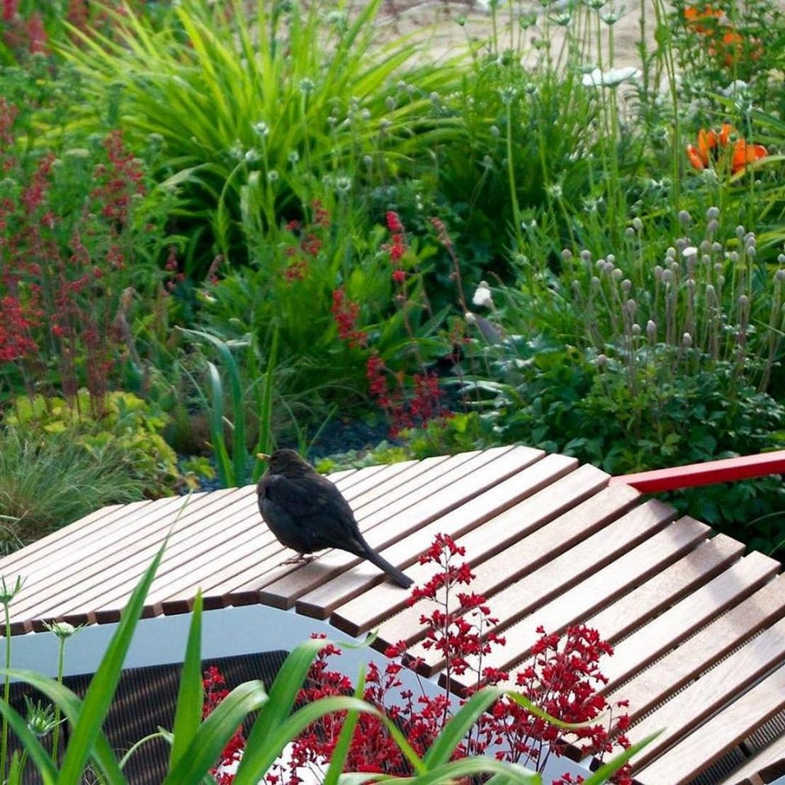 Chaise longue alva ext rieur de jardin en aluminium de for Massif de jardin exterieur